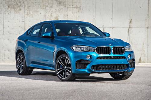 download BMW X6 M workshop manual