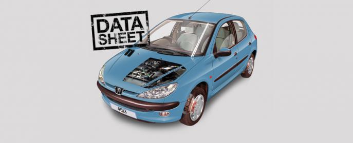 download Peugeot 206 workshop manual